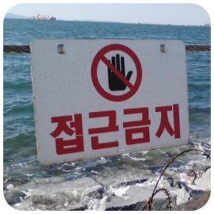 坂口健太郎が「韓国」って一体何?
