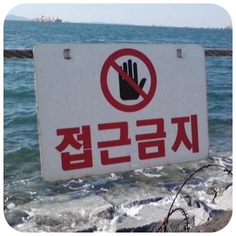 舛添要一が韓国人ってマジ!?母・嫁・朝鮮飲みが衝撃的!!【画像】
